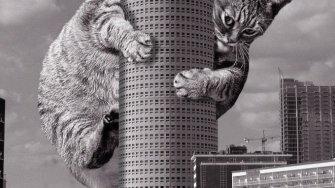 踏まれてペチャンコになってもいい。巨大猫×建築のコラ写真がクセになる